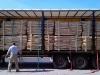 vracht-kastanjehout