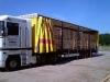 vervoer-kastanje-palen